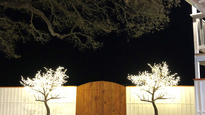 Beautiful lit trees at WindSong Pavilion's outdoor celebration and event venue in Dripping Springs