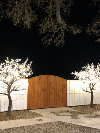 sparkling trees at outdoor performance venue The Alexander at Creek Road