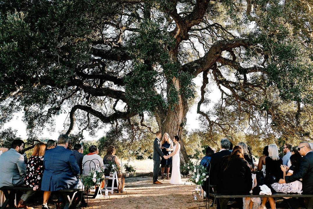 Vows at Cascade Oak by Mercedes Morgan Photography