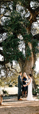 Vows at Cascade Oak by Cascade Oak Outdoor Ceremony Site for fresh air weddings by Mercedes Morgan Photography