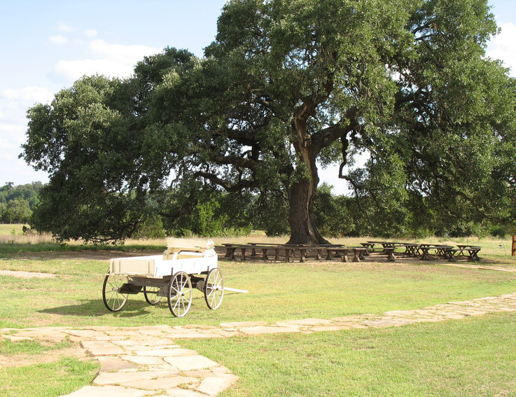 Hill Country Wedding Weekend venues with accommodations near San Antonio