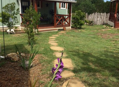 Hill Country Vacation Cottages in Dripping Springs!  You'll love it here!