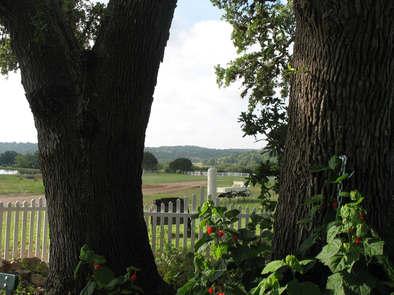 intimate wedding venues near austin texas