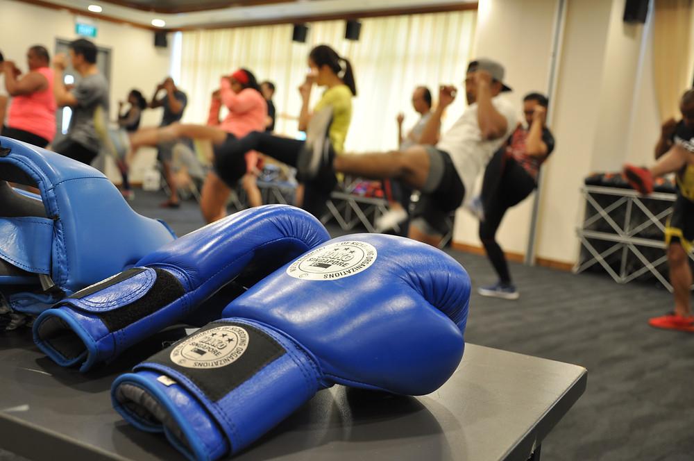 WAKO Singapore Kickboxing Coach Level 1_3