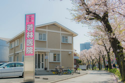 Spring-_DSC5997