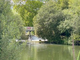 The weir at Shifford Lock