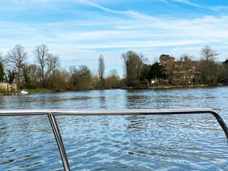 Mid-Thames looking towards D'Oyly Carte Island