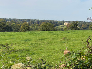 Looking left towards the river. I think the property in the distance might be Basildon Park NT