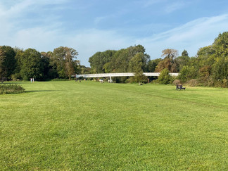 Pangbourne Meadow