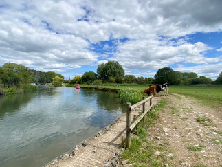 Looking downstream back to Lechlade