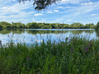Neigh Bridge Country Park - a country park within Cotswold Water Park