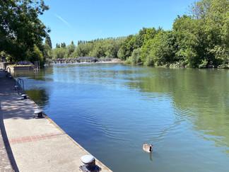 Approaching Caversham Lock & Weir again