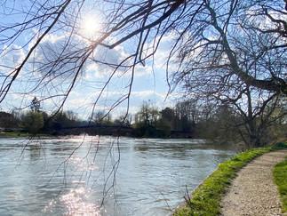 Sonning Bridge from downstream