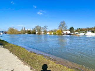 Looking back to Henley