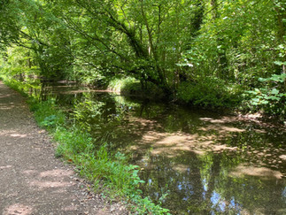 The tree-lined path continues with more Cotswold Water Park lakes on each side