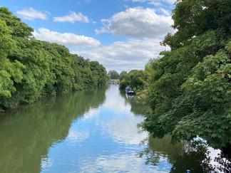 Looking downstream from Godstow Bridge