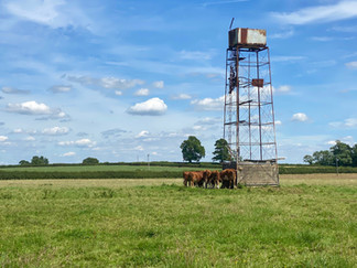 Old wind pump