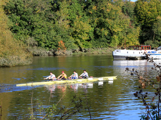 Rowers out on the river