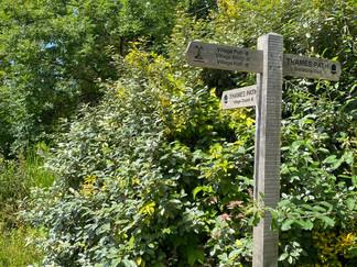 Plenty of signs through the village