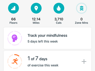 Today's steps. I did do a quick walk in Oxford before meeting up with the others