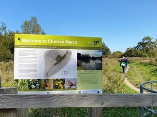 Entering Cholsey Marsh Nature Reserve