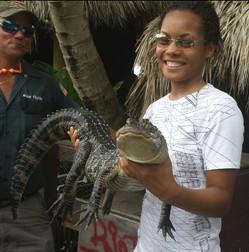 Alligator (FL)