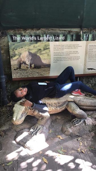 Perth Zoo (AU)