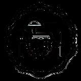 Logo Instagram copie.png