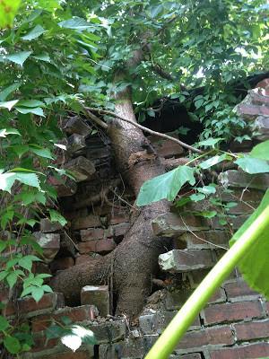 tree brick.JPG