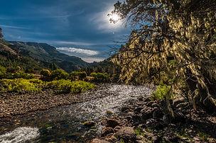 Contraluz Río Meliquina