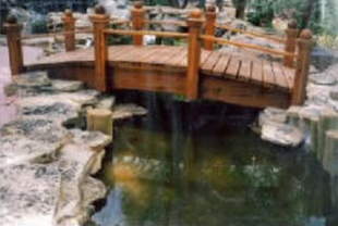 pond-with-bridge.png