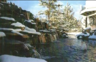 waterfall-in-snow.png