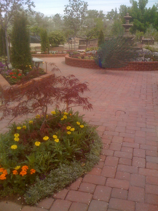 Patio-with-garden.png