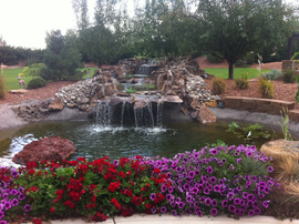 Water-feature-pond-front-view.png