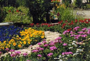CCB-Power-Flower-Pathway.jpg