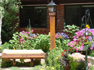landscaped-garden-area-with-seating.png