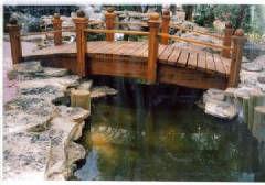 Anns_bridge_jpg_w240h168.jpg