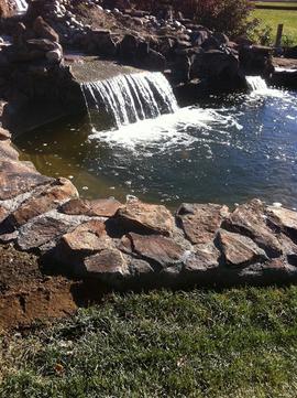 Volcanic-stone-cap-for-pond-spyglass-pon