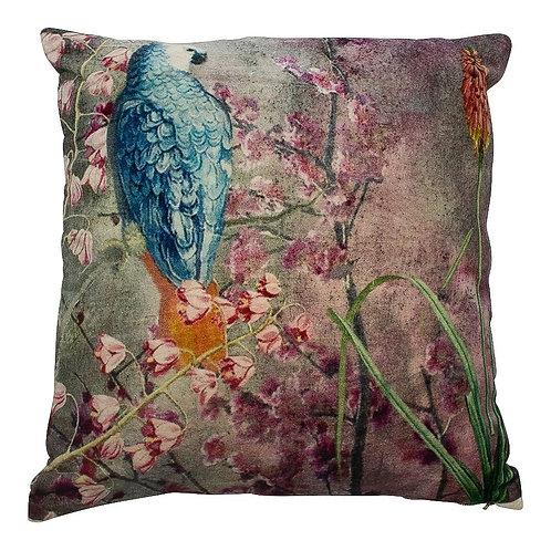 Coussin velours charmant bleu rose perroquet