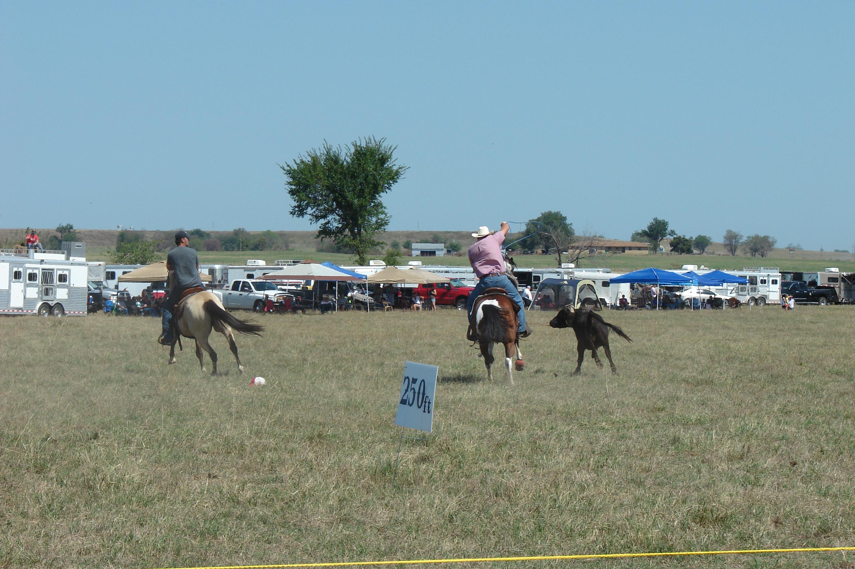 pasture roping 096