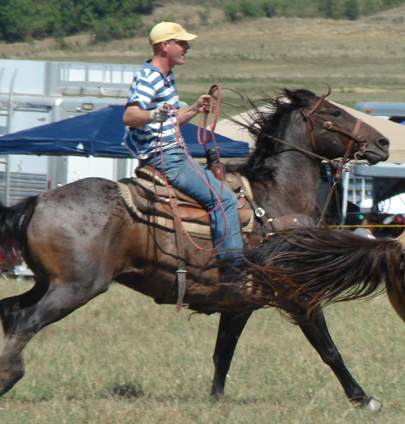 pasture roping 083