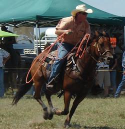 pasture roping 108