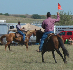 pasture roping 064