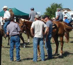 pasture roping 063