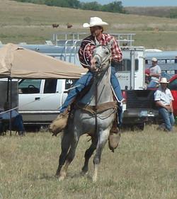 pasture roping 085