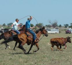 pasture roping 090