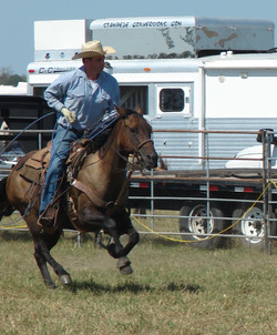 pasture roping 066