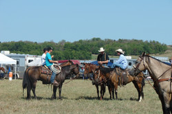 pasture roping 062