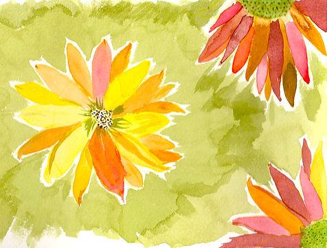 FLYING FLOWERS WS.jpg