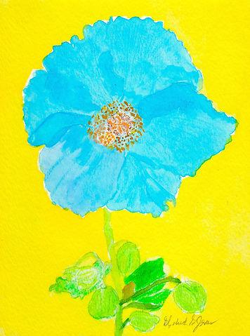 BLUE POPPY WS .jpg